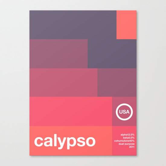 calypso single hop Canvas Print