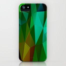 Vertices 5 iPhone Case