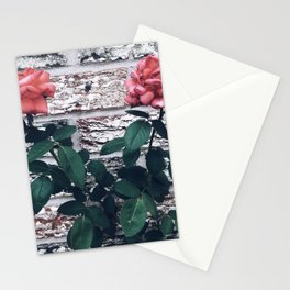 Chillin' by the bricks 2 Stationery Cards