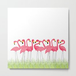 Cuban Pink Flamingos Metal Print