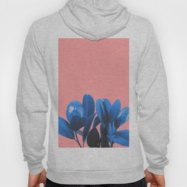 Blue Plant Pink Background Hoody