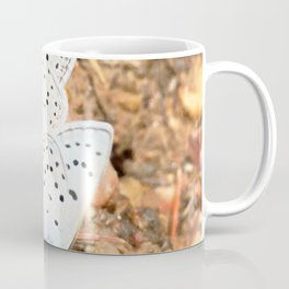 Watercolor Butterfly, Spring Azure Butterfly 01, Fall River Road, RMNP, Colorado Coffee Mug
