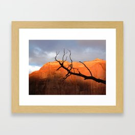 Golden Walls Framed Art Print