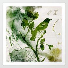 Birds (square 1) Art Print
