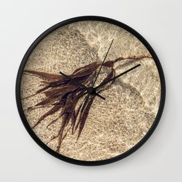 Shoreline Seaweed. Wall Clock