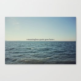 meaningless Canvas Print