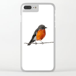 Robins Clear iPhone Case
