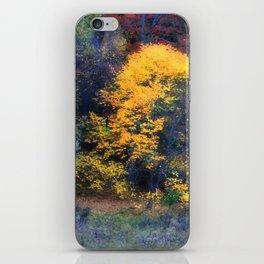 Golden Tree iPhone Skin