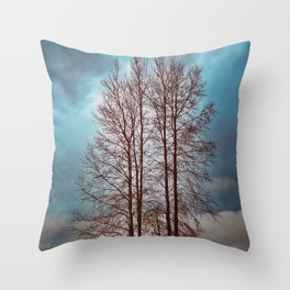 By The River Banks Throw Pillow