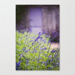 Down the garden Path, No. 1 Canvas Print