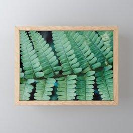 Minimal fern leaf Framed Mini Art Print