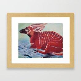 Tragelaphus eurycerus Framed Art Print