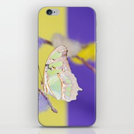 Tropical butterfly sitting on the colored bush over yellow and purple background iPhone Skin