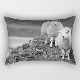Rhos and Silly Rectangular Pillow
