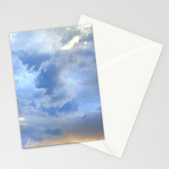 solo flight Stationery Cards