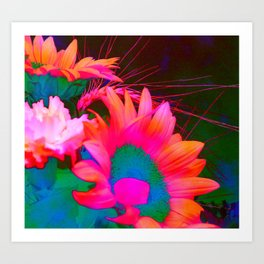 Sunflower 22 Art Print