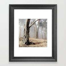 Print #4 Framed Art Print