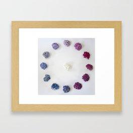 Circle of Hydrangea Framed Art Print