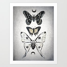 Moonwings Art Print
