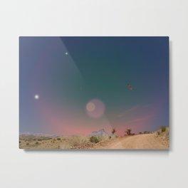 Sky Bird Metal Print