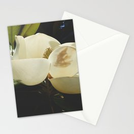 Magnolia Blossom Stationery Cards