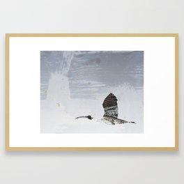 Ibis, Abyss Framed Art Print