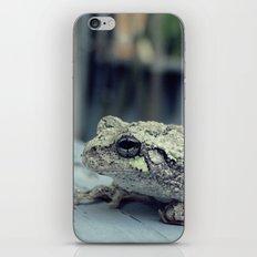 Toad iPhone & iPod Skin