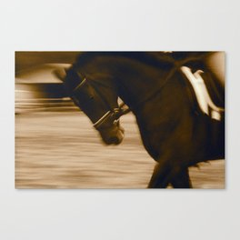 Warm Up Dressage, Malibu, California Canvas Print