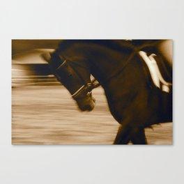Warm Up Dressage, Malibu, California Canvas Print