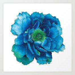 Blue Peony in Watercolor Art Print