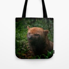 Bush Dog Tote Bag