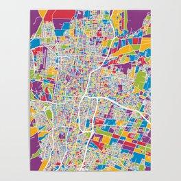 Mendoza Argentina City Street Map Poster