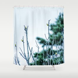 Six Finches in a Tree Shower Curtain