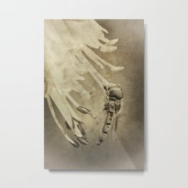 An Old Hoverfly Metal Print