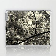 Monochrome Leaf's  Laptop & iPad Skin