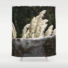 Flowering Pampas Grass Plumes Shower Curtain