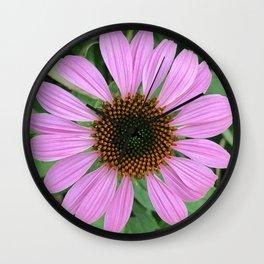 In Bloom 2019 - Cone Flower 2 Wall Clock