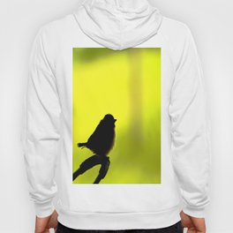 Baby Bird In Early Summer #decor #society6 Hoody