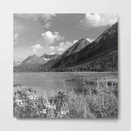 Tern Lake - Mono 2 Metal Print