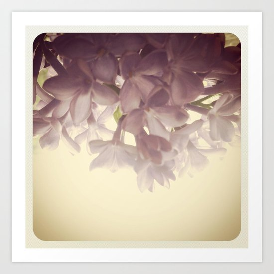 Morning Lilac Art Print