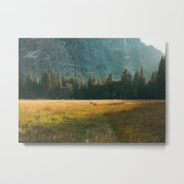 Meadow Sunset in Yosemite Metal Print