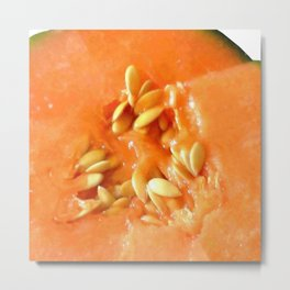 Melon Nature Metal Print
