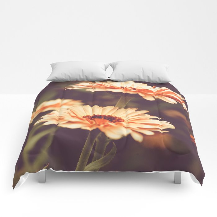 Salmon Colored Fields Comforters