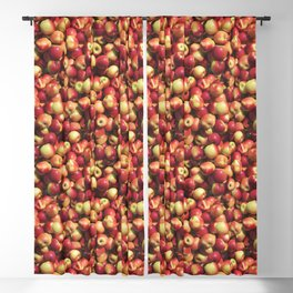 Red Apple Photo Pattern Blackout Curtain