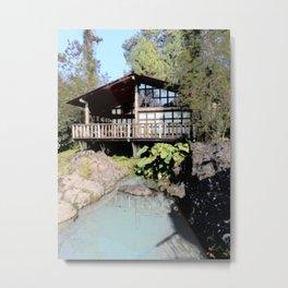 little house Metal Print