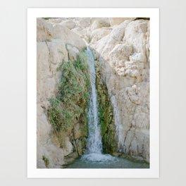 Desert Waterfall at Ein Gedi - Holy Land Fine Art Film Photography Art Print