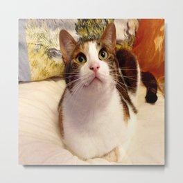 Antigone sweet kitty Metal Print