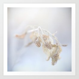 Winter Stillness Art Print