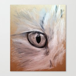 CatsEye Canvas Print