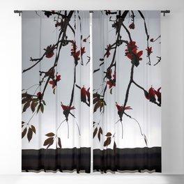 ZEN Blackout Curtain